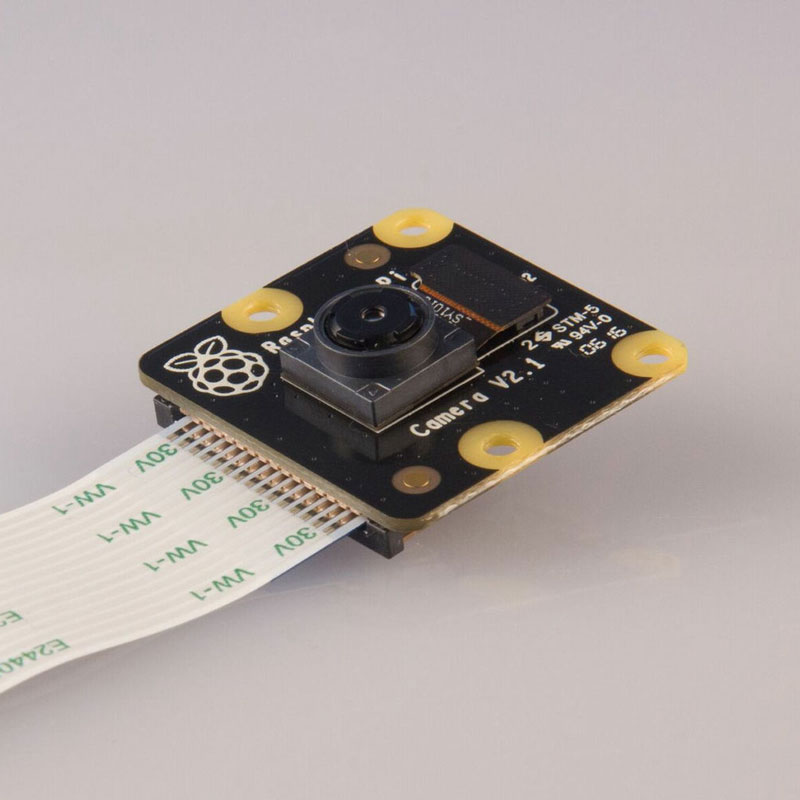 Raspberry Pi NoIR Kamera-Modul V2